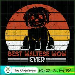 Dog Vintage Best Maltese Mom Ever SVG , Dog SVG , Dog Silhouette , Mom SVG , Dog Vintage SVG
