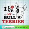 Bull terrier copy