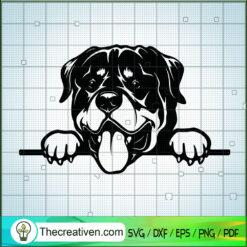 Peeking Rottweiler SVG, Rottweiler Dog SVG, Pet Lover SVG