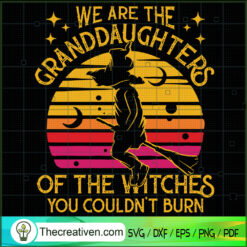 We are The Grandaughter of The Witches You Couldn't Burn SVG, Witches SVG, Witches Vintage SVG